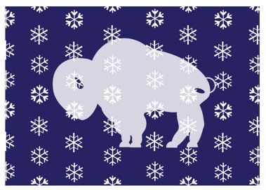 Wintery Buffalo Card