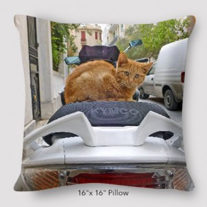 Inspired Buffalo_Jan_Augustyn_CatMotorPillow