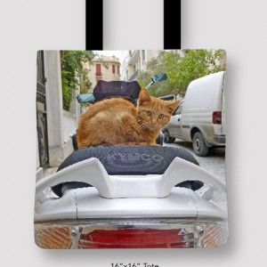 Inspired Buffalo_Jan_Augustyn_CatMotorTote