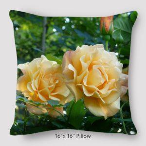 Inspired Buffalo_Jan_Augustyn_Mums_Roses_Pillow