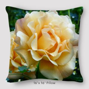 Inspired_Buffalo_Jan_Augustyn_Mike's_Rose_Pillow