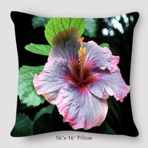 Inspired Buffalo_EileenGraetz_Hibiscus_Pillow