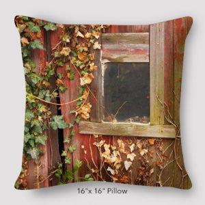 inspired-buffalo_ron_zerkowski_16x16_window_vines_pillow